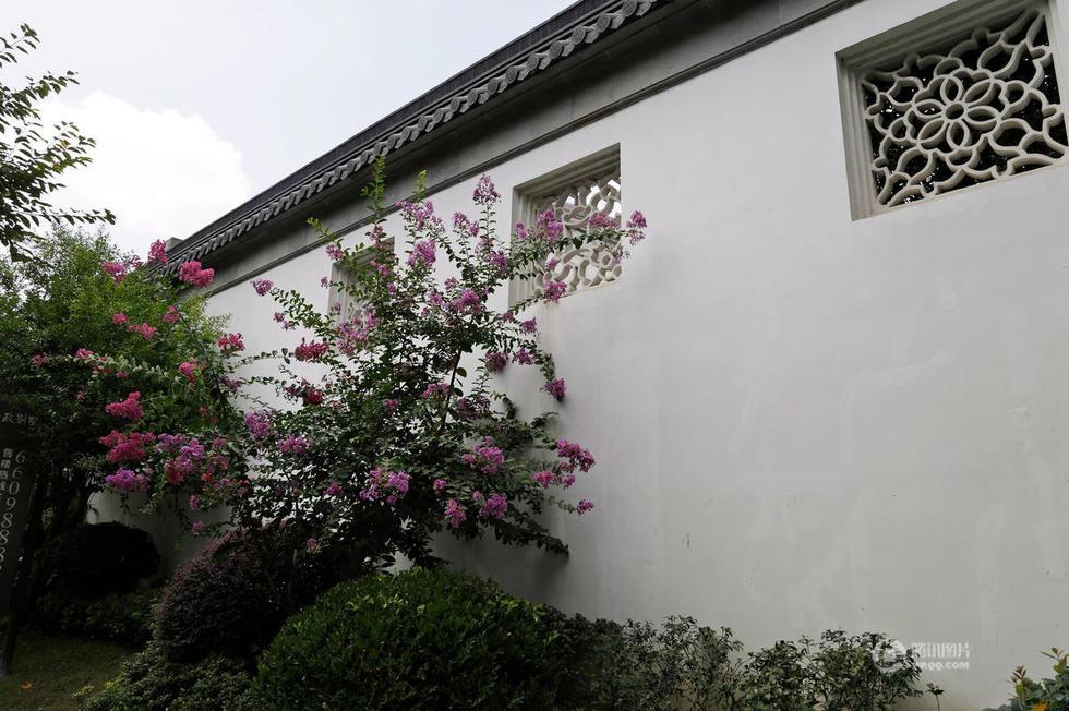天下第一豪宅:苏州拙政别墅